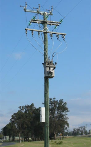 Image 1 of Electricity Power Poles showing straightness and height