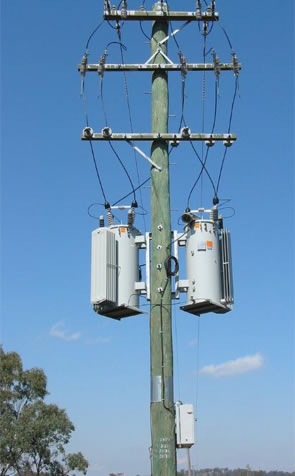 Image 2 of Electricity Power Poles showing straightness and height