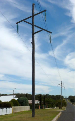 image 3 of Electricity Power Poles showing straightness and height