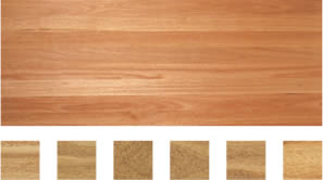 Select grade sample of Blackbutt flooring